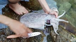 🔥🔥 HIẾU   Rất hay: Review câu cá và nướng mực tại đảo