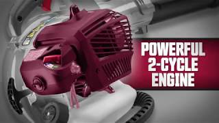 Photo: 2 Cycle Blower/Vac