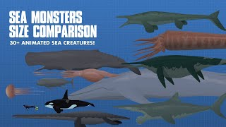 LARGEST SEA CREATURES | ANIMATED Size Comparison (Sea Monsters)
