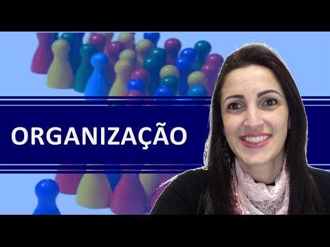 20# Dica de Organização - Corretora de Seguros | Claudia Simplicio