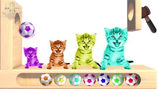 Learn Colors With WOODEN LAKE Vlad Baby CAT Cartoon Funny - Learning Videos For Kids