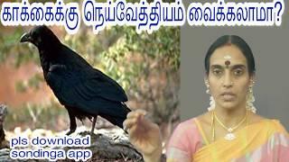 நெய்வேத்தியத்தை காக்கைக்கு வைக்கலாமா? Can we put the Neivethyam for crow?