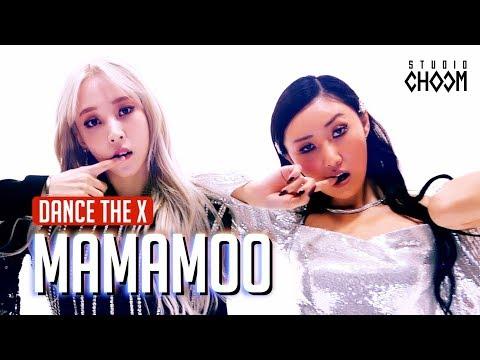 [Dance the X] 마마무(MAMAMOO) '고고베베(gogobebe)'