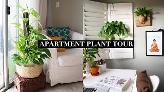 30+ PLANTS AND A DOG WHO EATS MY PLANTS | LA APARTMENT TOUR