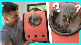 Buying Our Cats Weird Cat Products