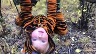 A Fall Day in the Forest: Spidey & Tiger Romp Around the Woods