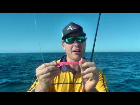 How to Catch Coral Trout on Halco/Madeye Soft Plastics