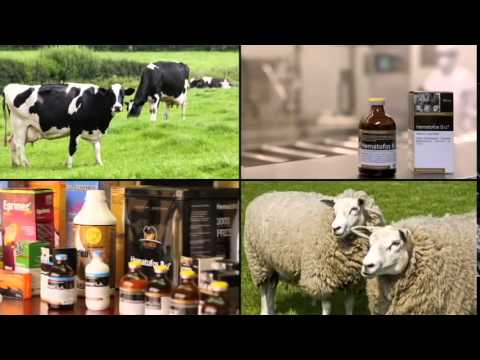 Agrovet Market Animal Health 2014