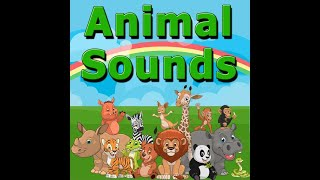 13 month old baby girl : animal sounds