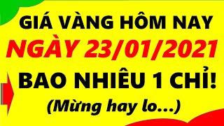 Giá Vàng Hôm Nay Ngày 23/01/2021 - Giá Vàng 9999 Bao Nhiêu 1 Chỉ!