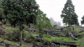 Costa Rica - Asi es mi Tierra.avi