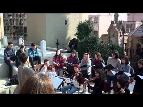 Festa de l'Ametller florit 2011 - Intervenció musical