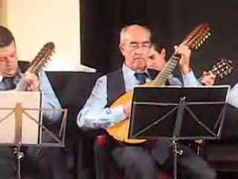 Orquesta de Pulso y Pua