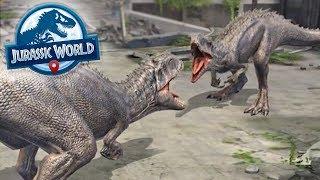 Indominus Rex VS Indominus Rex!!! - Jurassic World Alive   Ep24 ( Jurassic GO )