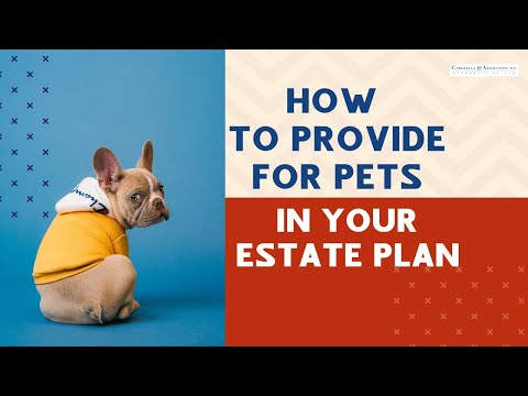 Estate Plan: How to Provide For Your Pets