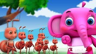 những con kiến đi diễu hành | vần cho trẻ em | The Ants Go Marching