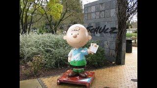 Charles M. Schulz Museum - Visit Santa Rosa