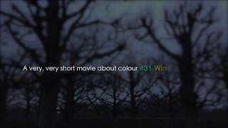 Vibeometry A Very Very Short Movie About Colour #31 Winter Garden F