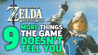 9 More Things I Wish I Knew Before I Started Zelda: Breath of the Wild