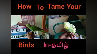 EPS-34 how to tame your birds in Tamil