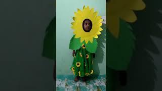 Sun flower performance by little baby