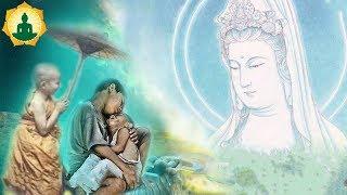 """Kể Truyện Đêm Khuya """"Cực Hay"""" Về Sự Thật Số Kiếp Loài Người  _ AUDIO Truyện Phật Giáo"""