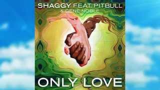 Shaggy - Only love ft Pitbull & Gene Noble - Official Lyric Video