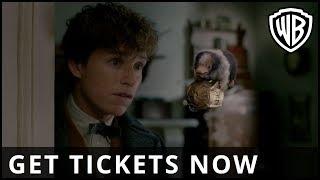 Fantastic Beasts: The Crimes of Grindelwald - Accio Tickets - Warner Bros. UK