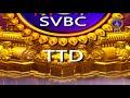 శ్రీవారి డోలోత్సవం | Srivari Dolotsavam | 12-06-19 | SVBC TTD  - 07:47 min - News - Video