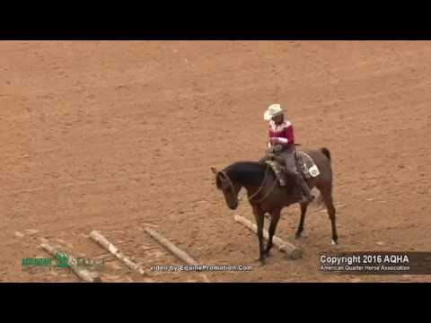 A Judges Perspective: 2016 Select Ranch Riding World Champion