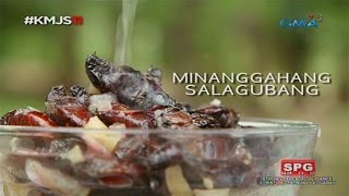 Kapuso Mo, Jessica Soho: Salagubang delicacy in Nueva Ecija