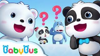 Otro Panda Kiki | Kiki y Sus Amigos | Dibujos Animados Infantiles | BabyBus Español
