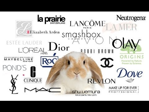 Makeup that doesnt test on animals