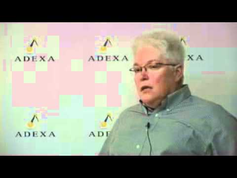 Microchip's Fab Planning with Adexa