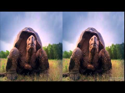 Sky 3D UK / David Attenborough - Galapagos Advert 2013 hd1080p