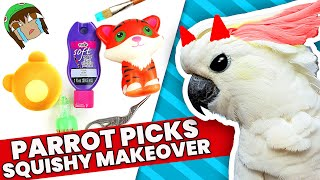 THE WORST CHOICES! My PARROT Picks My Squishy UnMakeover Supplies Challenge #4
