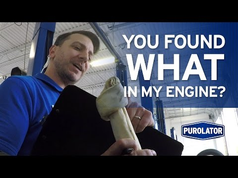 You Found What in My Engine? This Prank Brought to You by Purolator.