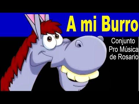 A MI BURRO - Conjunto Pro Música de Rosario