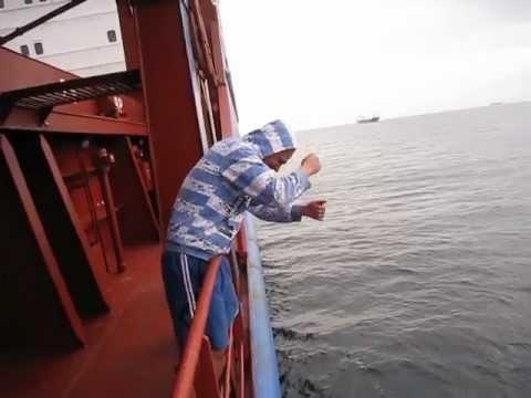 Рыбалка на рейде возле Бельгии