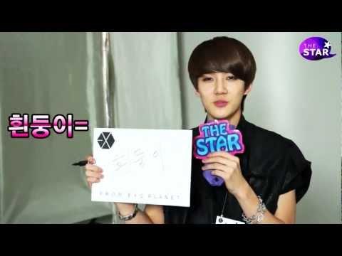 [TheSTAR] 엑소케이(EXO-K) 세훈(SeHun)은 '흰둥이'?