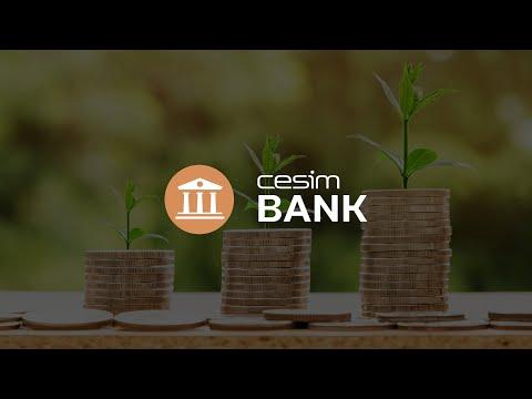 Cesim Bank - Bank Management Simulation
