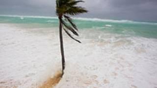 Hurricane Igor Giant Waves Video - Elbow Bay Beach, Bermuda