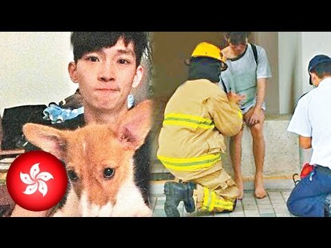 Hero Dog Saves Owner From House Fire - Smashpipe News