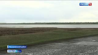 Дорогу между поселками Помурино и Элита в Москаленском районе начнут ремонтировать уже в мае