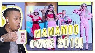 Reacting To MAMAMOO - gogobebe MV