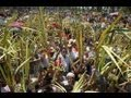 Doxology Introduction for Palm Sunday and the Feast of the Cross  احد الشعانين