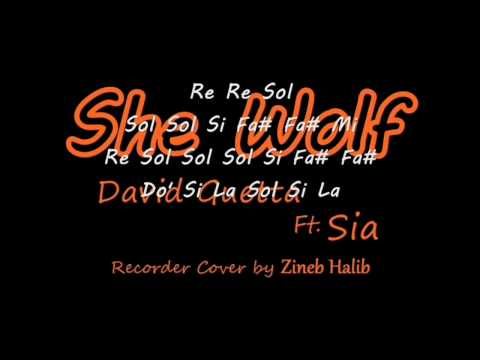 Baixar She Wolf-David Guetta ft. Sia (Flute à Bec/Recorder Cover by Zineb Halib) Notes