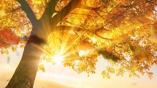"Peaaceful music, Relaxing music, Instrumental music ""Golden Autumn Peace"" by Tim Janis"