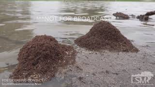 09-22-18 Arlington,TX - River Flooding (4K)