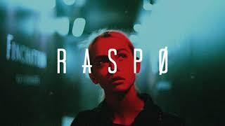 Shawn Mendes - In My Blood (Raspo Remix)